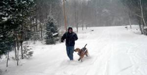 Riley the Airedale in the snow playing with Dad!